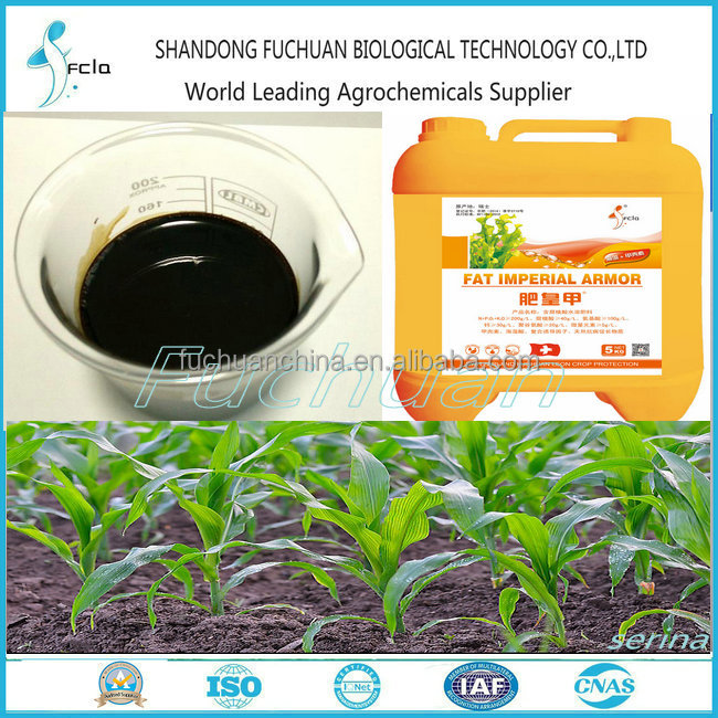 Factory Liquid Humic Acid Fertilizer in Agriculture Water Soluble Fertilizer