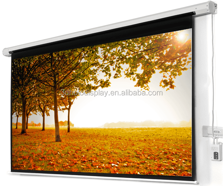 16:9 Format 150 inch Deluxe Motorized Projector Screen, Movie Theater Screen