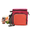 Hot Sale Travel Insulated Picnic Bag with Water Bottle Bag (YX-Z236)