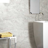 branded name porcellanato floor and wall tiles design pictures