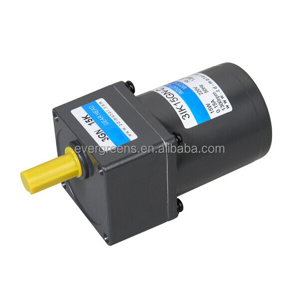15W mini low rpm electric motor
