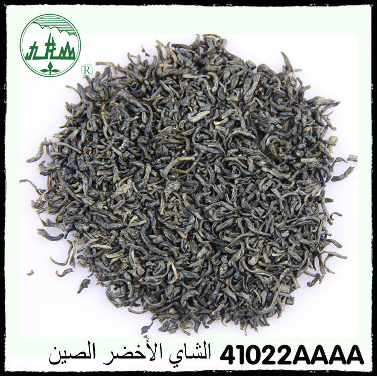 41022AAAA Factory supply low price inclusion-free no pollution best green tea/kenya green tea