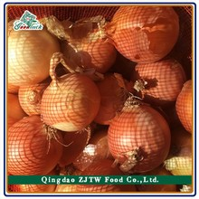 Fresh Red Onion 5-8cm Exporting to Malaysia
