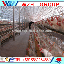 Light Type and BS,ASTM,JIS,GB,DIN,AISI Standard Prefabricated chicken farm steel structure building