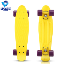 22inch Cruiser Skateboard Complete Plastic Banana colorful Board with PU wheels fish skateboard