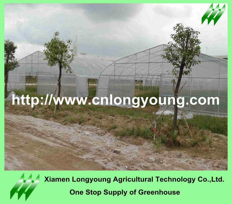 Agriculture Plastic Sheet Farm Green House