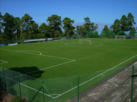 FIFA 2 star artificial turf for soccer