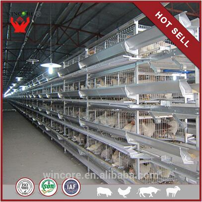 H Tier 4 Layers Chicken Battery Cages For Nigeria Farm