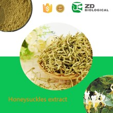 Food Additives sweetberry honeysuckle extract Chlorogenic acid powder