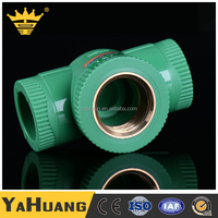 Standard Size Plumbing Protective Plastic PPR Names Pipe Fittings