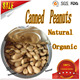 high demand export products Fried and Salted Peanuts Canned Roasted Salted Peanuts
