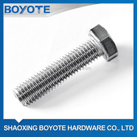 Satinless Steel Bolt and Nut