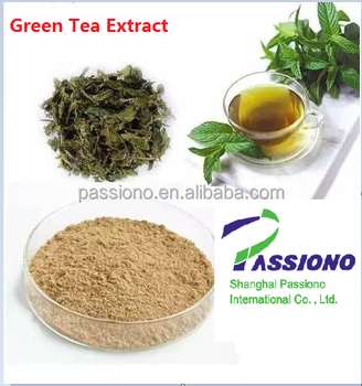 Price Green Tea Extract 30% Polyphenols in stock