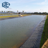 Waterproofing Sheet HDPE Geomembrane Plastic Rolls
