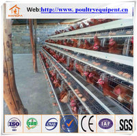 High quality poultry battery cages for sale