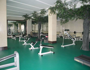 Vinyl sports flooring for gymnasium