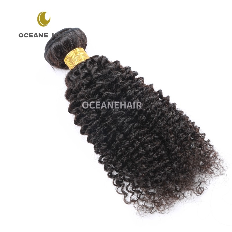 Factory Wholesale brazilian human hair afro kinky straight braiding curly