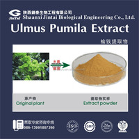 100% pure natural ulmus pumila extract