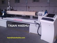 small wood lahte CNC2504SA cnc wood log lathe and wood engraving machine with low price