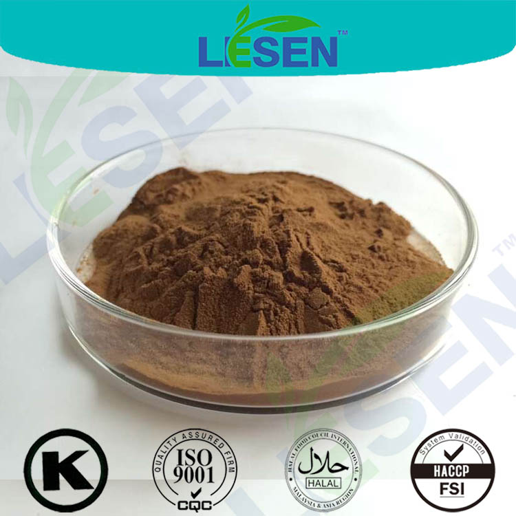 Factory Supply High Quality Reishi Mushroom Extract 20% Triterpenes
