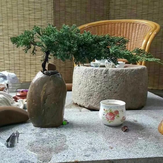 Pebble Vase Wholesale Vase Suppliers Alibaba