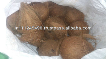 Indian Fresh Coconut Exporters
