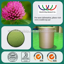 Free sample HACCP FDA Kosher cGMP free sample 40% red clover isoflavone red clover p.e.powder red clover extract