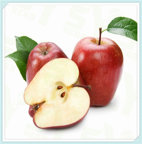 Spray Dried Green Apple Powder Organic , Apple Extract Powder Drinking Manufacturers