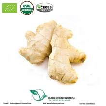 Organic dried ginger powder / best market price bulk ginger