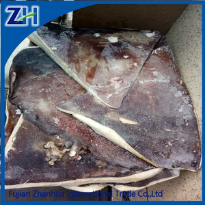 Good Quality Frozen Dosidicus gigas Giant Squid Wing