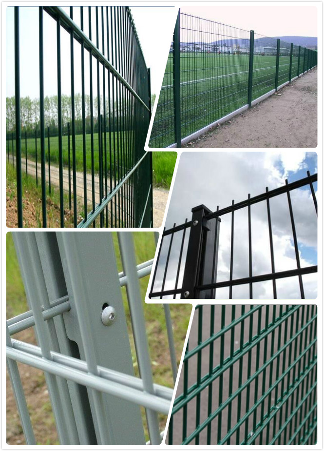 Twin Wire Mesh Fence- 868/656/545