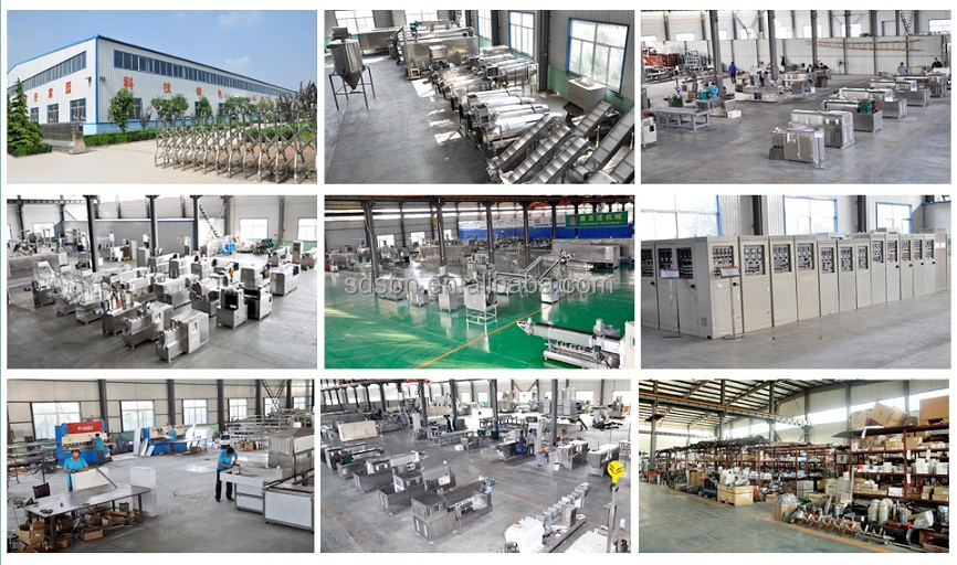 Automatic Testy doritos snacks food processing making production plant