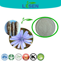 Jerusalem Artichoke Extract, Inulin Powder, Chicory Root P.E.