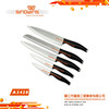 Professional 5pcs Stainless Steel Knife Set