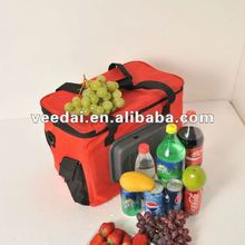 24L car cooler bag/thermo-electric sport fridge/small cooler
