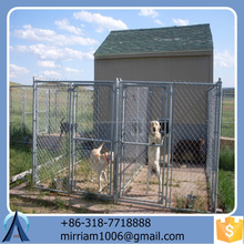 2016 new design large dog kennel/pet house/dog cage/run/carrier