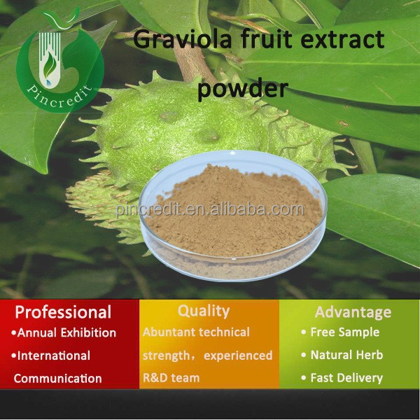 graviola cancer/organic graviola extract/Graviola fruit extract powder