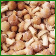 IQF cultivated raw brown frozen mixed mushrooms