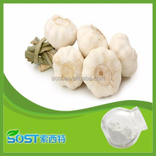 Best selling product bulk garlic extract allicin powder