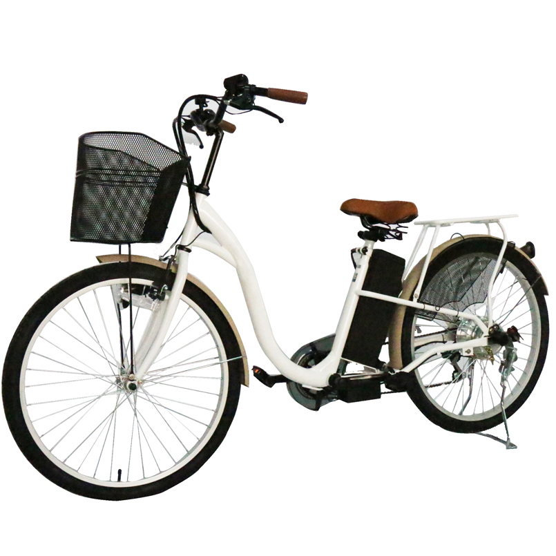 Ce Approved 250W High Speed Electric Bicycle