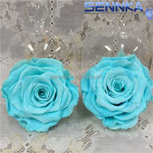 2017 Chinese supplier Colorful Artificial Imitate Preserved Rose Flowers, Artificial Potted Rose