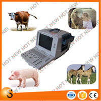 CE Digital veterinary b ultrasound for dogs and cats