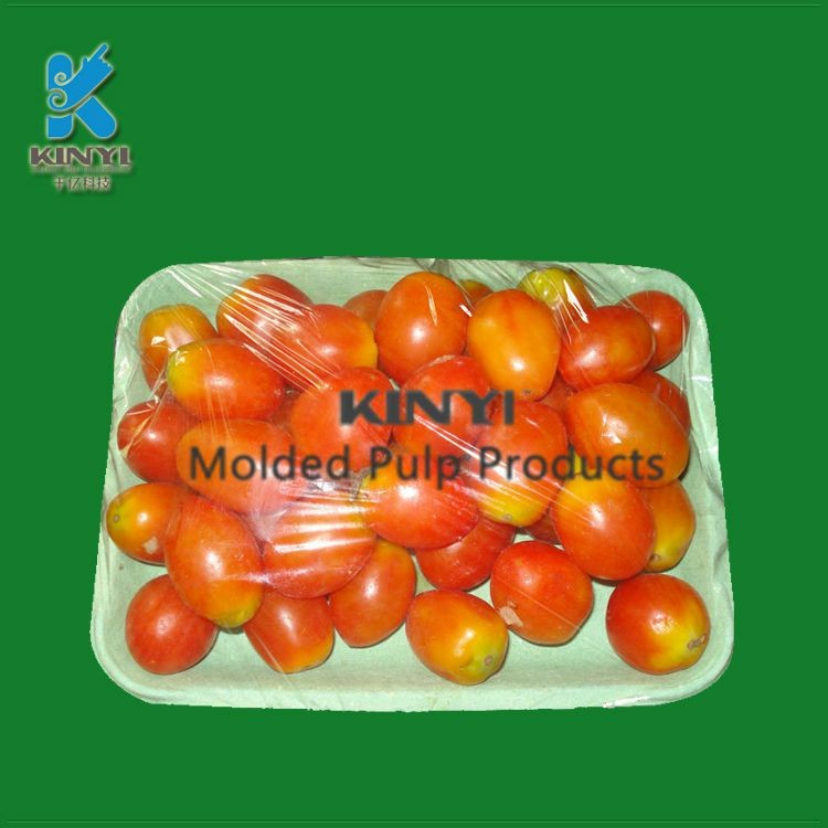 Designer and manufacturer of eco friendly wet pressing molded pulp fruit tray