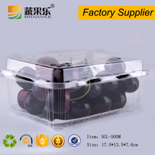 Fancy disposable fruit and vegetable storage box