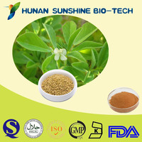 Nutritional Supplements 100% Natural Fenugreek Extract,Fenugreek Extract Powder
