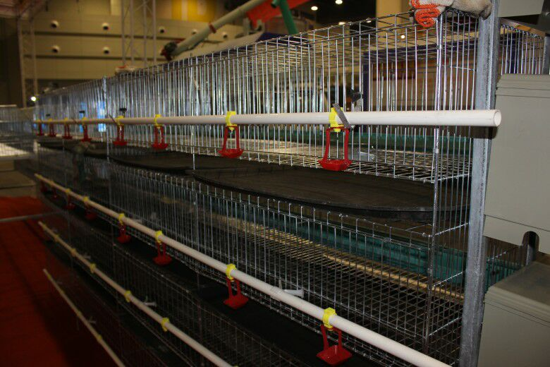 Poultry equipment price cheap chicken coops small chicken cage /baby chicks cages