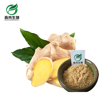 High quality herbal extract ginger extract powder for sale
