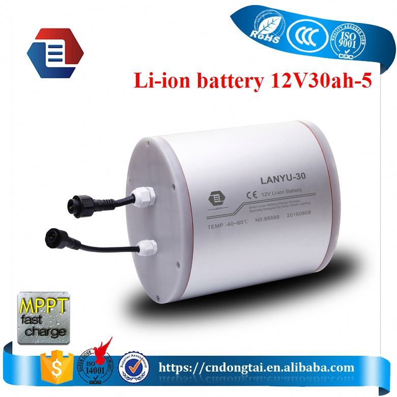 High capacity 12v30ah Rechargeable lithium ion battery packs for solar LED light /LYLIAL12V30B194