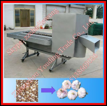 Best selling garlic root cutting machine 008615138669026