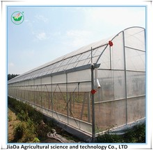 Good reputation tunnel green house provider in China